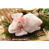 土雞(1.3-1.6kg)-黃金土雞